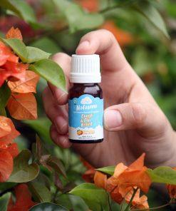 Essential oil untuk batuk pilek pada anak-anak